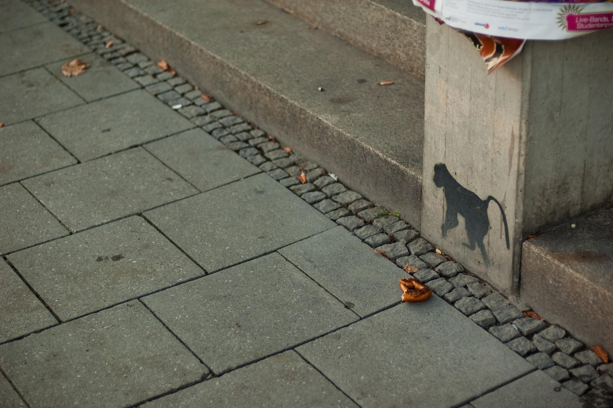 Maxvorstadt, München, Oktober 2008